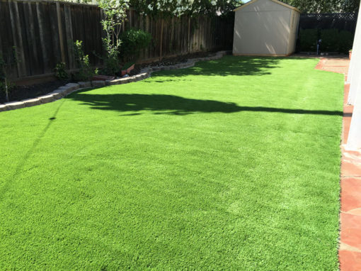 Tacoma Turf Installed in Saratoga, CA